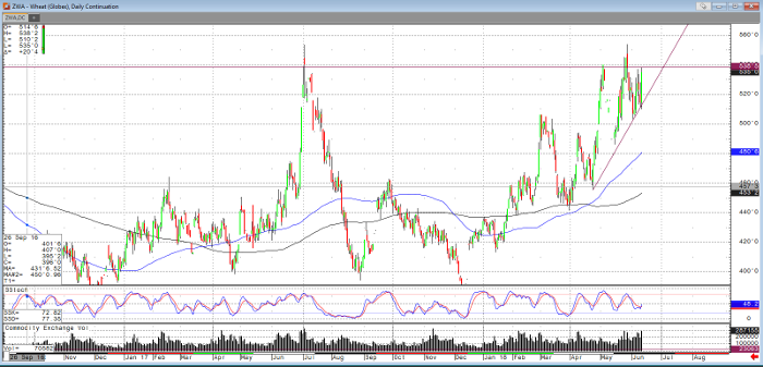 Wheat Daily Continuation Chart