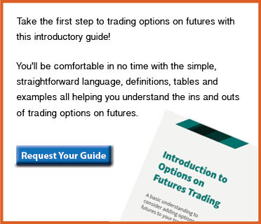Request your Intro to Options Trading Guide