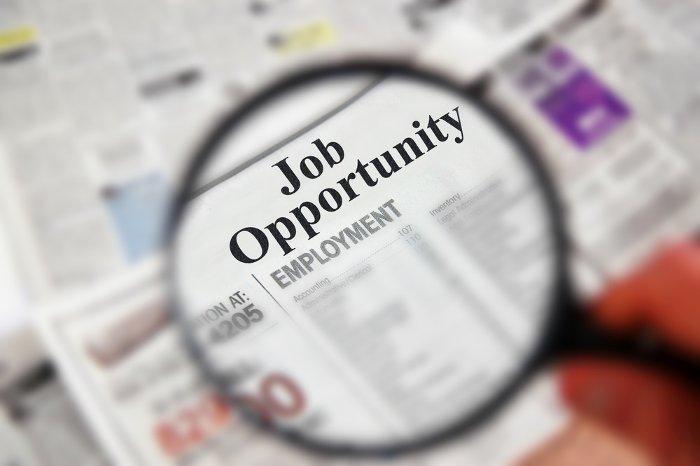 job_report