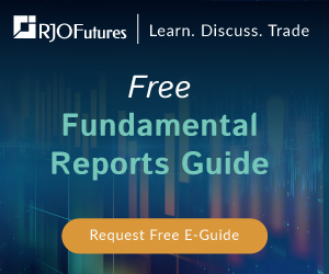 Free Fundamental Reports Guide