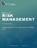 Basics of Risk Management guide download