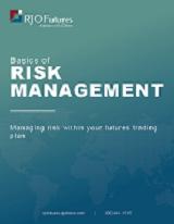 Basics of Risk Management guide download